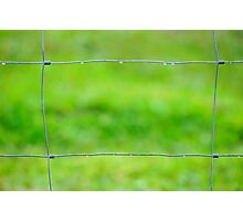 fenced in Photographic Print
