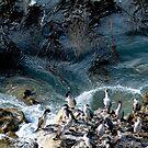 Te Kaio  beach headland  Christchurch NewZealand by john  Lenagan