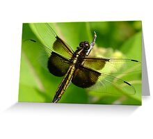 I Love The Light In Your Big Brown Eyes Greeting Card
