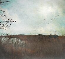 Marshland Calm by Susan Werby