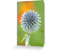 """ Oh, I had such a shock, the gardener came towards me with a pair of scissors in his hands "".  Greeting Card"