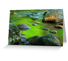 River Reflections Second Act Greeting Card
