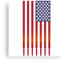 US Flag Parody Canvas Print