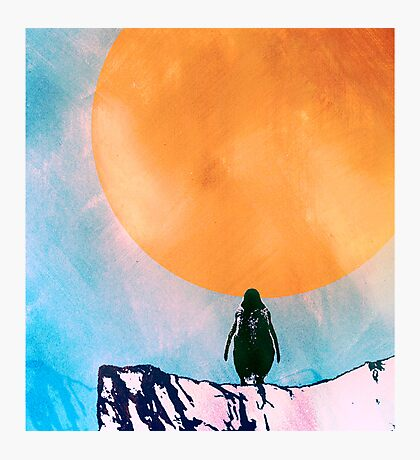 Lonely Penguin Photographic Print