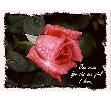 One Rose Photographic Print