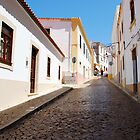 Portuguese Streets by Sarah Cowan