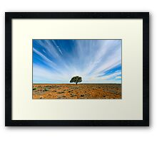 Stand Out - Tibooburra, NSW Framed Print