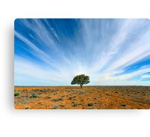 Stand Out - Tibooburra, NSW Canvas Print