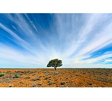 Stand Out - Tibooburra, NSW Photographic Print