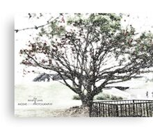 Winter Tree in La Brea Canvas Print
