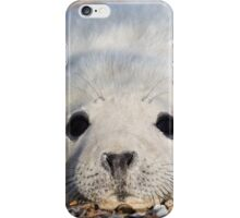 Seal Pup 2 iPhone Case/Skin