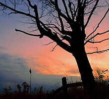 Countryside Sunset.. by JOSEPHMAZZUCCO