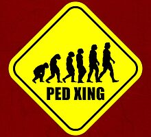 Ped Xing by jebez-kali