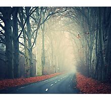 road to nowhere Photographic Print