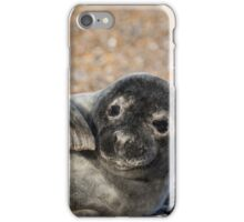 Seal iPhone Case/Skin