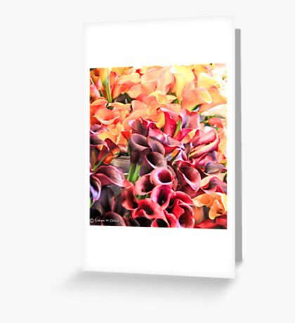 Vibrant Bloom Greeting Card