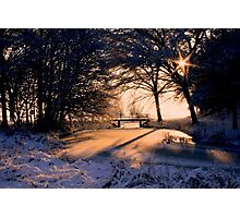 A Winter Star Photographic Print