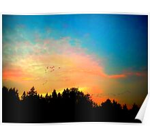 Geese Over Marymoor Poster