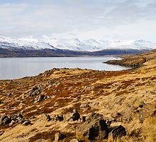 the road to egilsstaðir, iceland by gary roberts