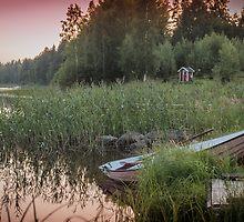 Summer mood by MikkoEevert