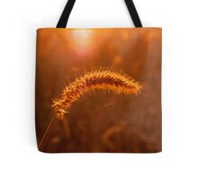 Grass Stalk at Sunrise Tote Bag