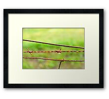 one barb Framed Print
