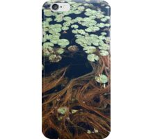 Pond Surface iPhone Case/Skin