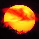 Ra the Sun God by Alex Call