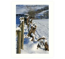 Snow in the Lakes Art Print
