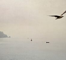 the flight by Ingz
