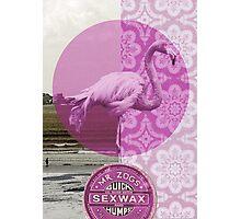 """""""Mrs Flamingo"""" Photographic Print"""