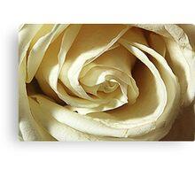 Flower in macro2 HDR Canvas Print