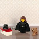 Home life of a Sith Lord by playwell