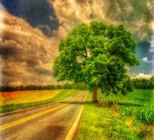 Take Me Home by Lois  Bryan