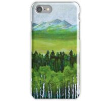 The abstract in Nature, acrylic on canvas iPhone Case/Skin