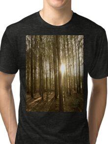 Through the Trees Tri-blend T-Shirt