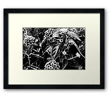 Wild Flowers - B&W Framed Print