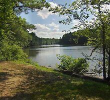 Triadelphia Reservoir by James Brotherton