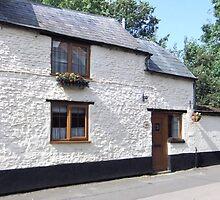Whitewash Cottage by neimagination