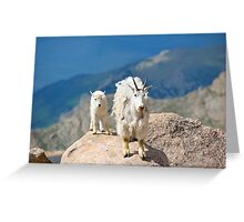 Mother and Baby Goat Greeting Card