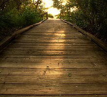 Boardwalk 5 by Michael Damanski