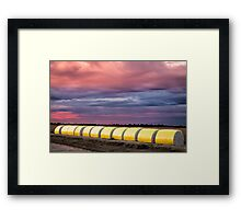 cotton bails on sunset Framed Print
