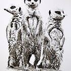 Meerkats by Paul Fearn