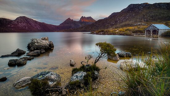 Dove Lake Dreaming. by Warren  Patten