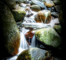 Water Stream in Hatton by anuradha77