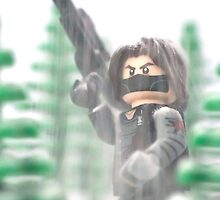 The Winter Soldier by Tom Milton