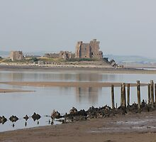 Furness low tide by kip13