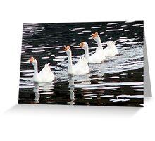Honking Geese Greeting Card