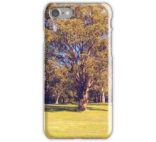 The Lone Tree iPhone Case/Skin