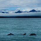 Chilkat Range Pan by Yukondick